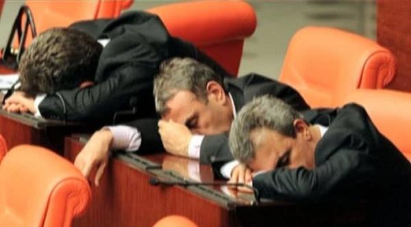 Partid parlamentar